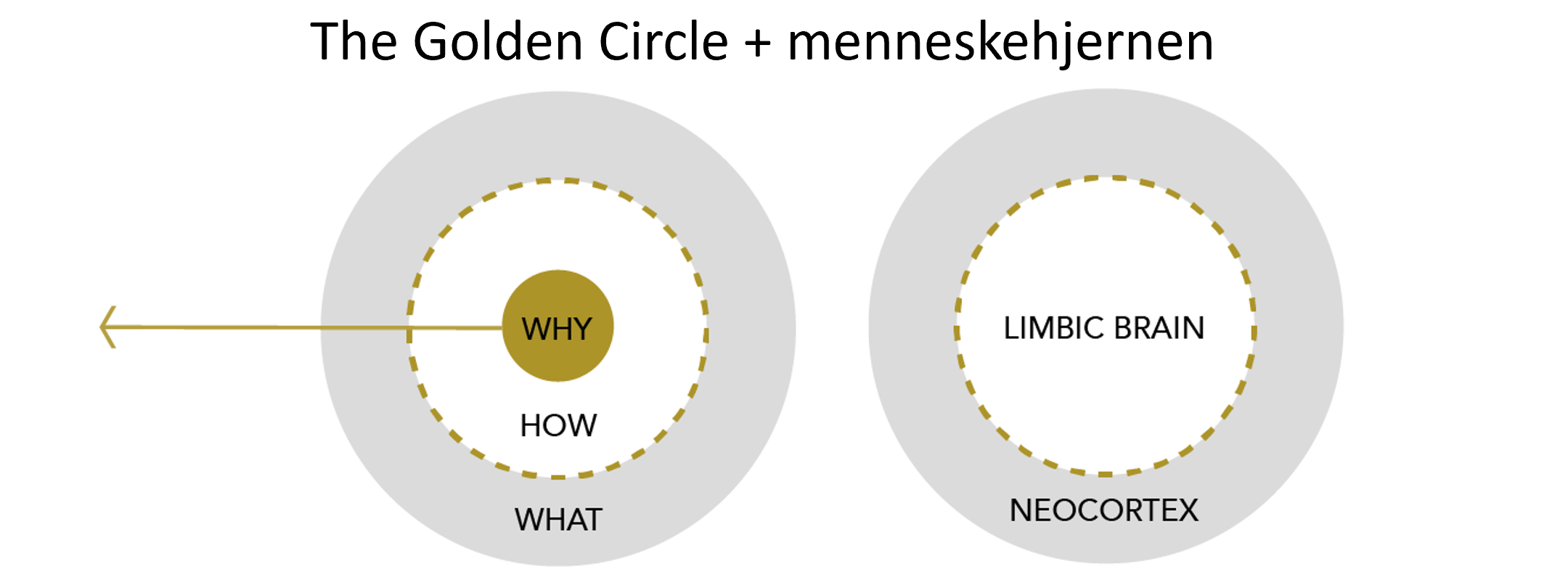 goldencirkle